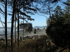 Ruby Beach, Washington Trails Assoc.  Looking north from the trail down to the beach. Photo by Scott&Lucy.