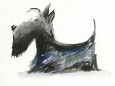 ACEO-Original-Watercolour-Painting-Scottie-Dog