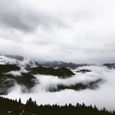More than 1000m #Alps #mountains #sky #fog #forrest #clouds #aerial #bavaria #berchtesgaden #jenner #germany #travel