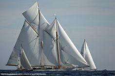 Gaff-schooner Elena of London: Les Voiles de Saint-Tropez