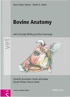 Veterinary Library: Bovine Anatomy An Illustrated Text