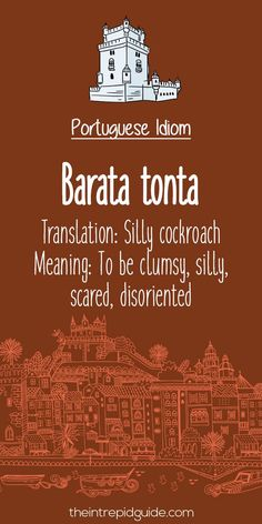 Portuguese phrases Barata tonta