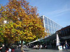 Fall in London - Spitalfields
