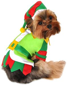 Anit Accessories 16-Inch Santa's Lil' Helper Dog Costume, Medium >>> Don't get left behind, see this great  product (This is an amazon affiliate link. I may earn commission from it)