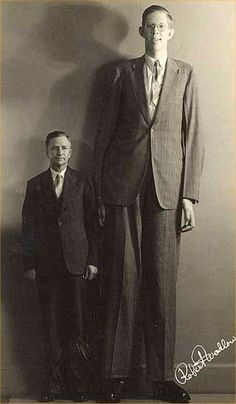 "Robert Wadlow 8'11"" is the tallest man in recorded history."