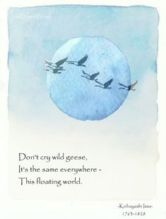 Don't cry wild geese, It's the same everywhere - This floating world. - Kobayashi Issa, 1763 Japanese poet and lay Buddhist priest of the Jōdo Shinshū sect known for his haiku poems and journals. Japanese Poem, Japanese Haiku, Zen Quotes, Poetry Quotes, Writing Poetry, Poetry Books, Very Short Poems, Wisdom Quotes, Frases