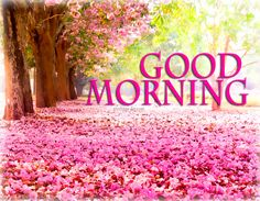 Good Morning - Best Pictures, Animated Pics and Quotes. #GOODMORNING http://greetings-day.com/good-morning-best-pictures-animated-pics-and-quotes.html