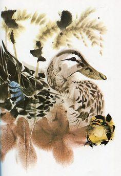 Ducks by Mirko Hanak #illustration #vintage #mirkohanak