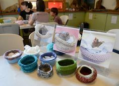 knit bird nests.  Use your knitting skills to knit nests for baby birds!