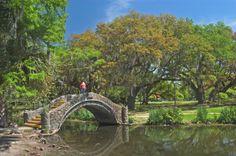 pictures of city park new orleans la   bridge in City Park. New Orleans, Louisiana, April 17, 2005.