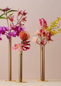 Vase Arrangements, Vase Centerpieces, Bud Vases, Flower Vases, Flower Arrangement, Modern Floral Arrangements, Vases Decor, Arte Floral, Ikebana