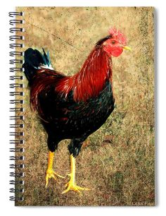 Rooster Red Art TexturedRooster Red is the king of the chicken coop, strutting his stuff all around the farm. He watches over all the beautiful hens and brings extraordinary chicks into the world to support the nutrition of the family and the farm. #journals #spiralnotebooks #recipejournals