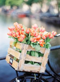 Only four nights until spring starts! Can't wait to see the colorful Dutch flowers everywhere in #Amsterdam