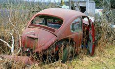 Beetle Wreck