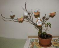 Vtáčiky v zime Plants, Plant, Planets