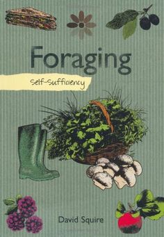 Self-sufficiency Foraging by David Squire http://www.amazon.co.uk/dp/1847737722/ref=cm_sw_r_pi_dp_HxFxwb1BAQM1X