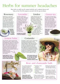 Herbs:  #Herbs for Summer Headaches.