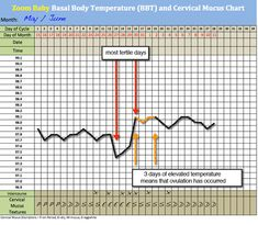 Fertility Charting - Identifying your peak day - Zoom Baby Chances Of Getting Pregnant, Trying To Get Pregnant, Cervical Mucus Chart, Basal Body Temperature Chart, Fertility Chart, Ovulation Test, Trying To Conceive, Menstrual Cycle