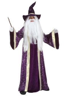 http://images.halloweencostumes.com/products/32449/1-2/kids-wizard-costume.jpg
