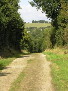 The lane that goes down the hill from Ty Hir to the River Ellez
