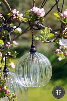 We made the most of the spring sunshine yesterday and photographed our Fritz Fryer Collection lights outside! http://fritzfryer.co.uk/hereford-ribbed-glass-globe-pendant-light