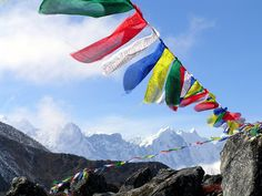 think these Tibetan prayer flags are so pretty, picked up a few to put up in my future hypothetical garden.