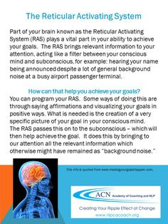 NLP & Coaching. Learn about the Reticular Activating System and how you can use it to achieve your goals.