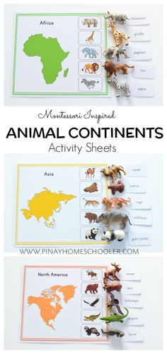 Montessori geography and culture activity - Animal continent sheets