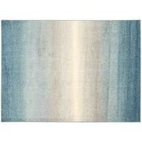 Shop OCMu0027s Dorm Room Rugs Available In A Variety Of Decorative Designs And  Colors. Area Or Shag Rug For Your College Dorm Room Today. Part 79