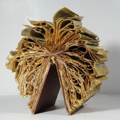 Book Sculptures | Cara Barer Photography | Book Sculpture, Book Photography, Paper Photo Sculpture