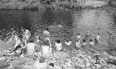 """Baron Wolman, ex-fotógrafo da Rolling Stones. """"Woodstock Deja Vu All Over Again"""" 1969 Woodstock, Festival Woodstock, Woodstock Hippies, Woodstock Music, Woodstock Concert, Janis Joplin, Grateful Dead, Bob Dylan, Jim Morrison"""