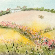 Honeysuckle Hedgerow- Pack of 6 cards | Sue Fenlon Trade