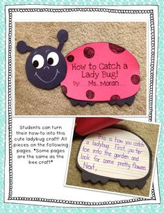 How to Catch a Ladybug! Tons of crafts, prompts and writing activities for your first and second graders!