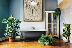 A Guide to Indoor Gardening: Our Review of  Living With Plants