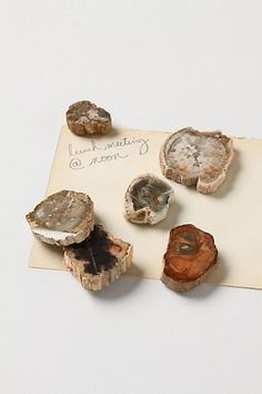 petrified wood magnets at Anthropologie via Design*Sponge