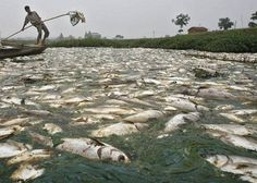Dirtiest River In The World