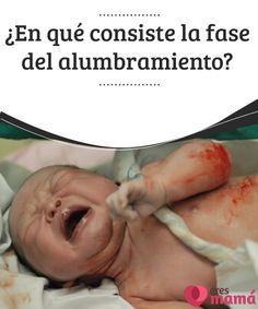 ¿En qué consiste la fase del alumbramiento?  El alumbramiento es la última etapa del parto y va desde el nacimiento del bebé hasta la total expulsión de la placenta