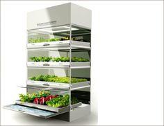 diy hydroponics - Google Search