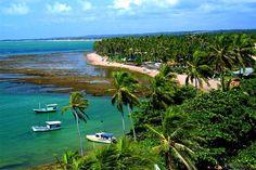 Praia do Forte, a Hard to Resist Brazilian Beach Paradise Brazil Holidays, Countries In America, Places Around The World, Around The Worlds, Brazil Beaches, Brazil Beauty, Rio Grande Do Norte, Ocean Shores, Beautiful Beaches