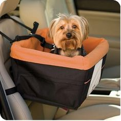 Sky Box BOOSTER Car Seat for Small Dogs Color Black/Orange