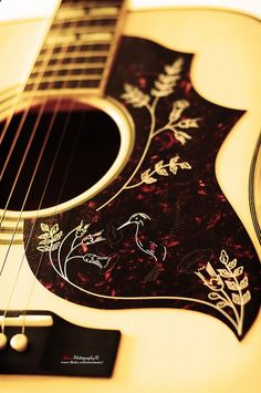 Limited Edition Epiphone Hummingbird Acoustic Guitar Check out GreatGuitarLesson. Guitar Fender, Acoustic Guitar Case, Music Guitar, Cool Guitar, Playing Guitar, Fender Acoustic, Guitar Cake, Dj Music, Ukelele