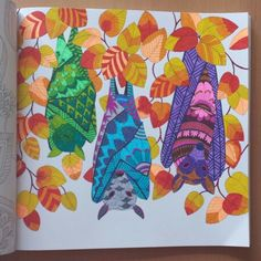 Tropical World Millie Marotta, coloring book
