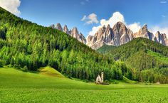 Beautiful Forest and mountains HD Wallpaper