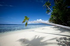 The Qamea Islands, #Fiji. So dreamy! #whitesand