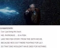 It wasn't even a patronus charm! Educate yourself!