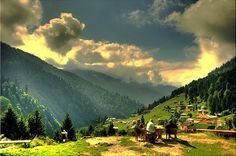 Ayder Plateau, Rize ⚓ Eastern Blacksea Region of Turkey #karadeniz #doğukaradeniz #rize