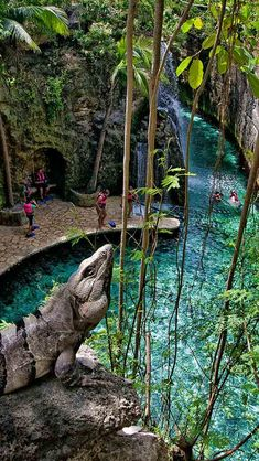 Put on a life vest and swim in crystal clear waters. Choose from three amazing underground rivers that run below the earth. Mexico Xcaret, Cancun Mexico Resorts, Cancun Vacation, Mexico Vacation, Mexico Travel, Dream Vacations, Vacation Spots, Cancun Xcaret, Spain Travel