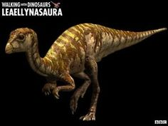 Walking with Dinosaurs - Fact File: leaellynasaura Walking With Dinosaurs, Dinosaur Facts, Dinosaur Images, Short Faced Bear, American Lion, Bbc, Dire Wolf, Prehistoric Creatures, Dinosaurs