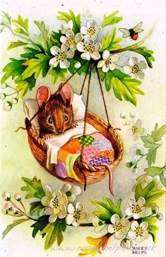 Beatrix Potter - baby mouse