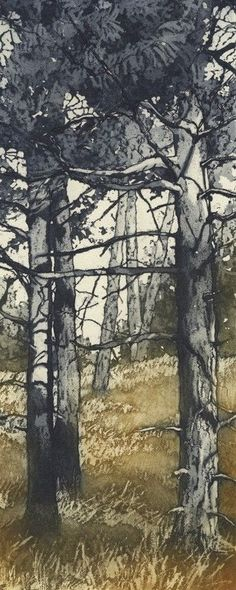 Chrissy Norman - Artist & Printmaker - Etchings of Suffolk - Trees by susieteague